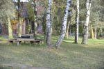 Bäume und Schaukel